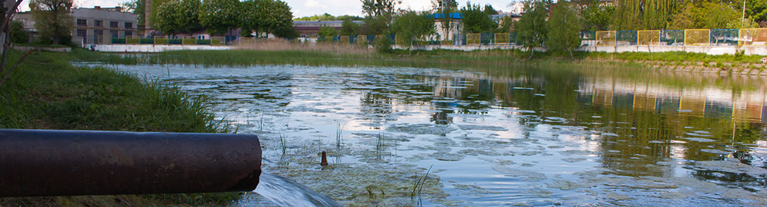 Photo of water pouring from pipe into pond, with background of buildings and marsh